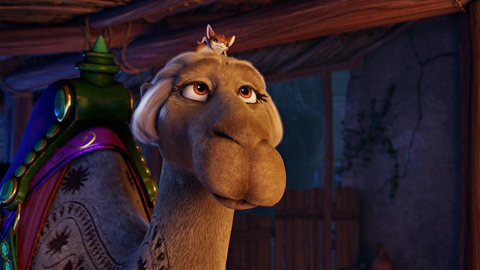 A camela fêmea