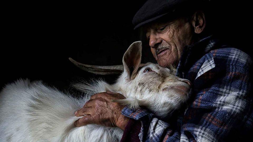 Um abraço: uma das melhores fo...