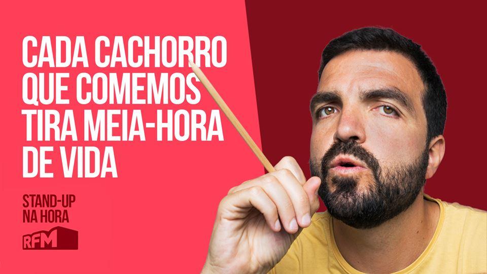 Salvador Martinha: Cada cachor...