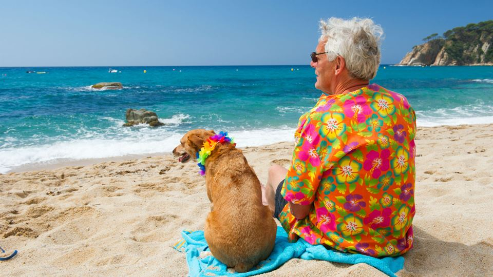 Cão ao lado do dono na praia
