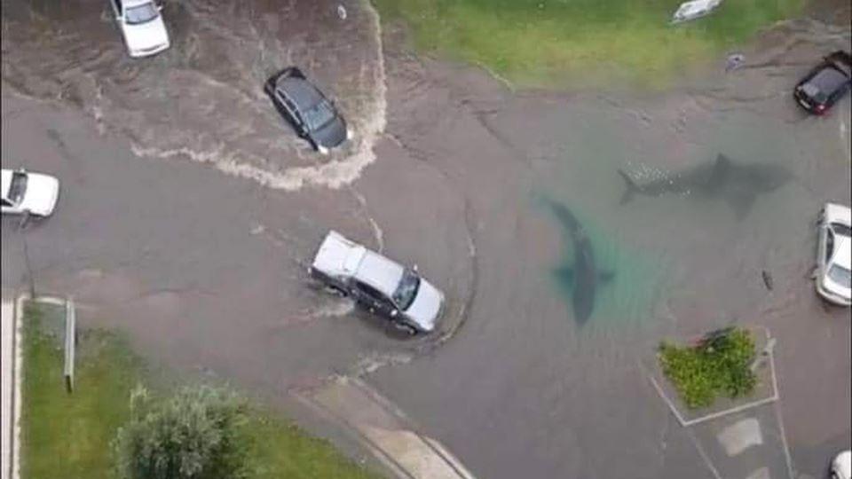 Inundações em Braga motivam di...