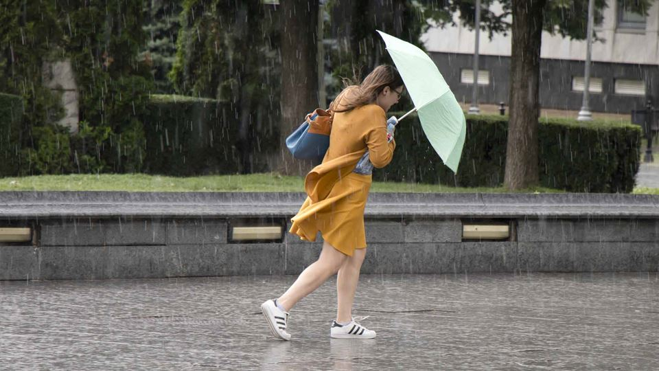Prepara o guarda-chuva: Chuva ...