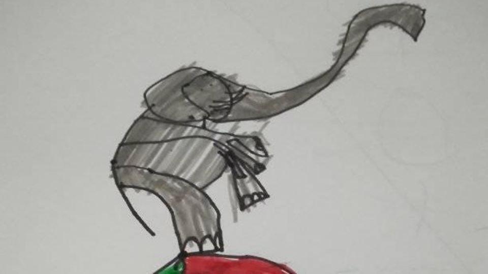elefante com bola - duarte