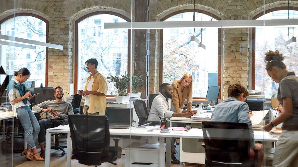 IPSS e Startups – afinal o que...