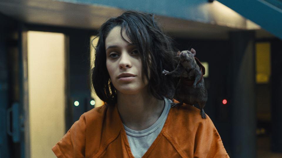 Esquadrão Suicida - Daniela Melchior