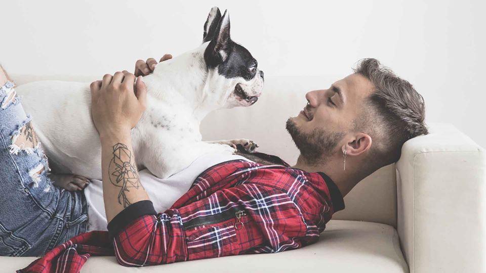 Será mesmo o cão o melhor amig...