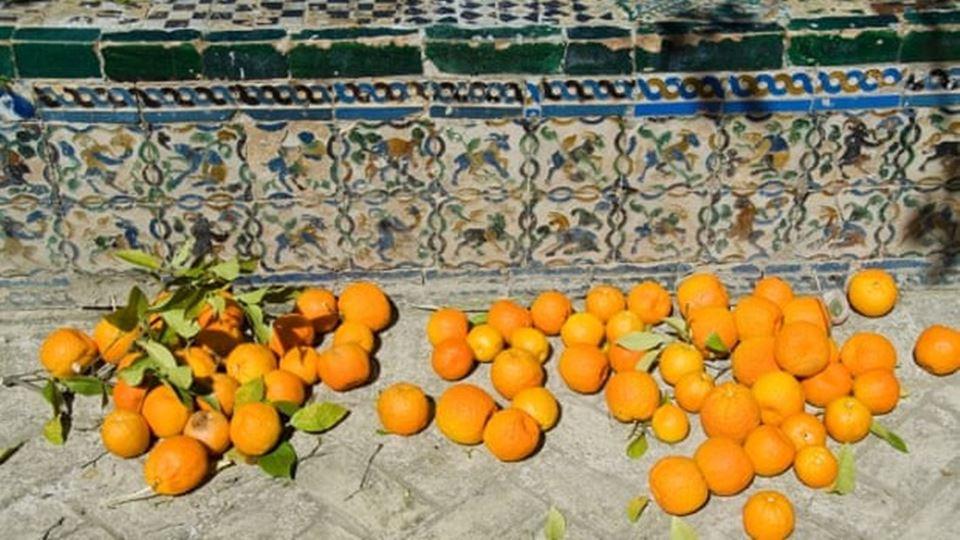 laranjas no chão