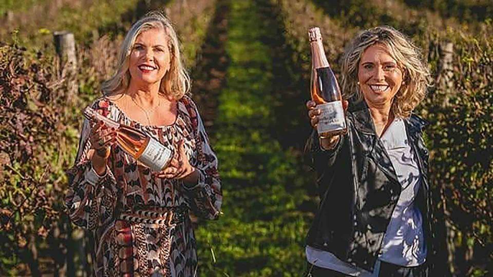 Mulheres com vinho na mão