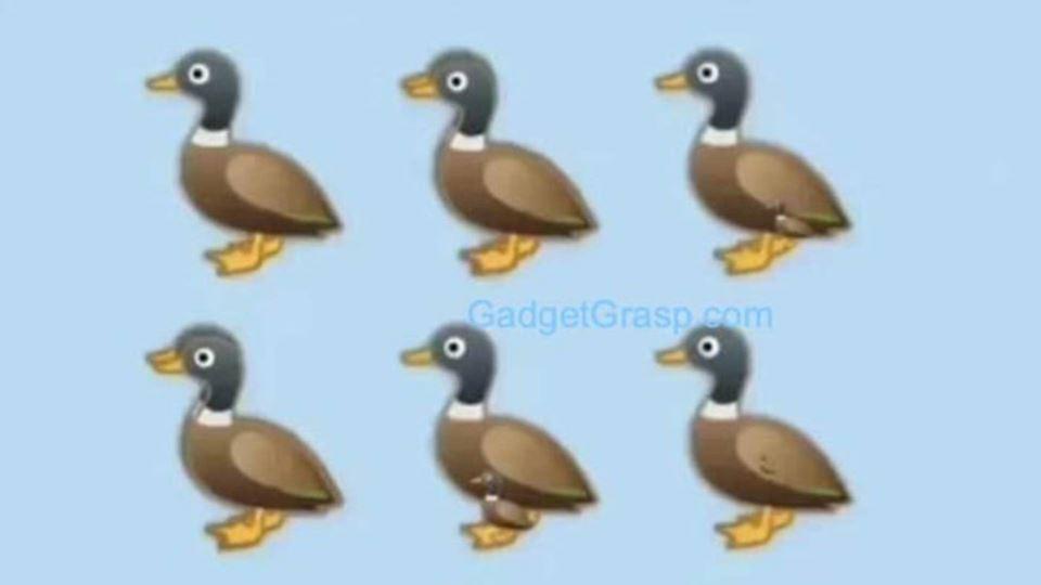 Quantos patos vês nesta imagem...