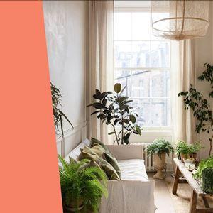 Ana Gomes Living - 5 dicas para a casa