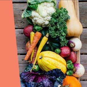 Ana Gomes Living - top 5 motivos para consumir produtos de origem biológica